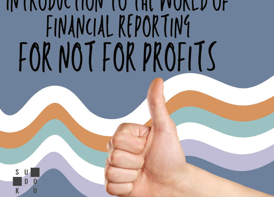 Not For Profits: An Introduction to Financial Reporting